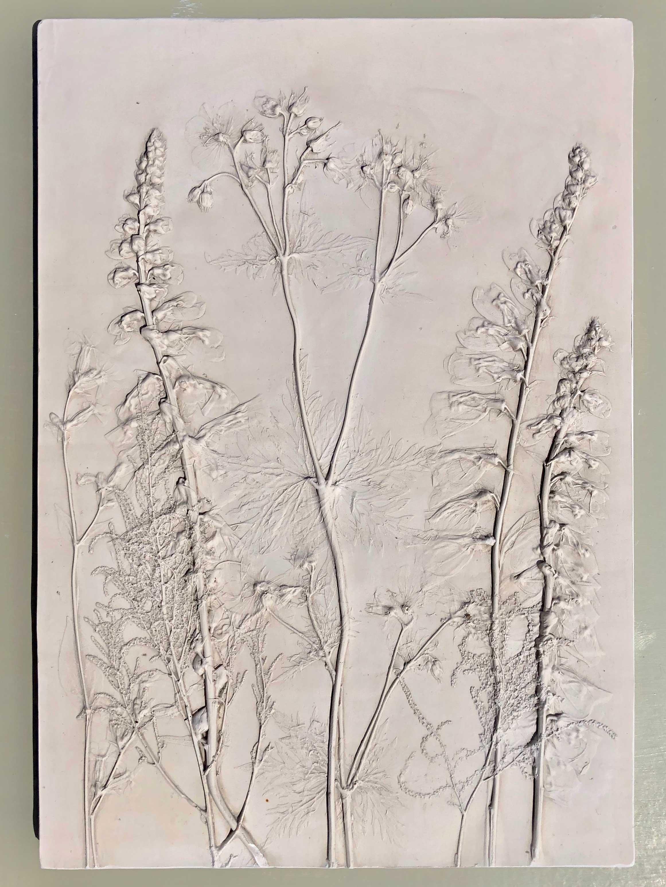 Katy Eccles Foxglove and Geranium
