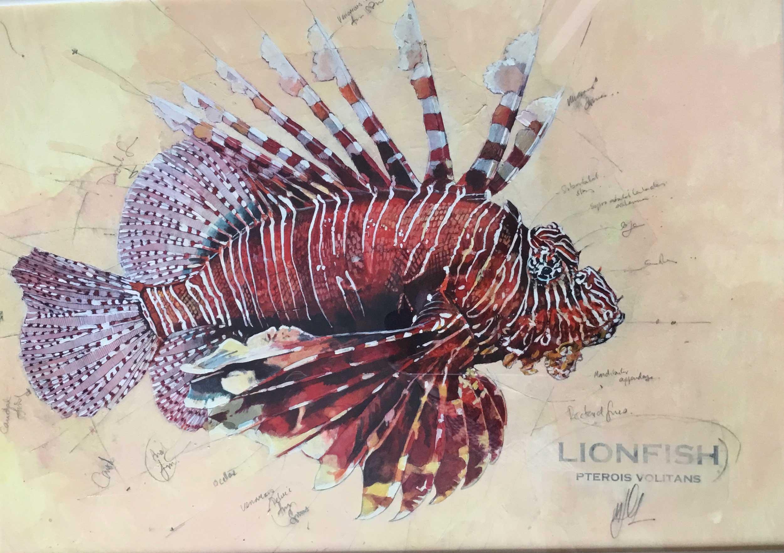 Malcolm Cheape Lionfish