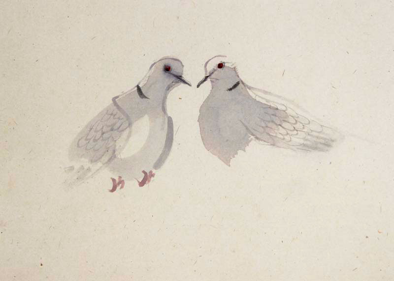 Claire Harkess Love Doves