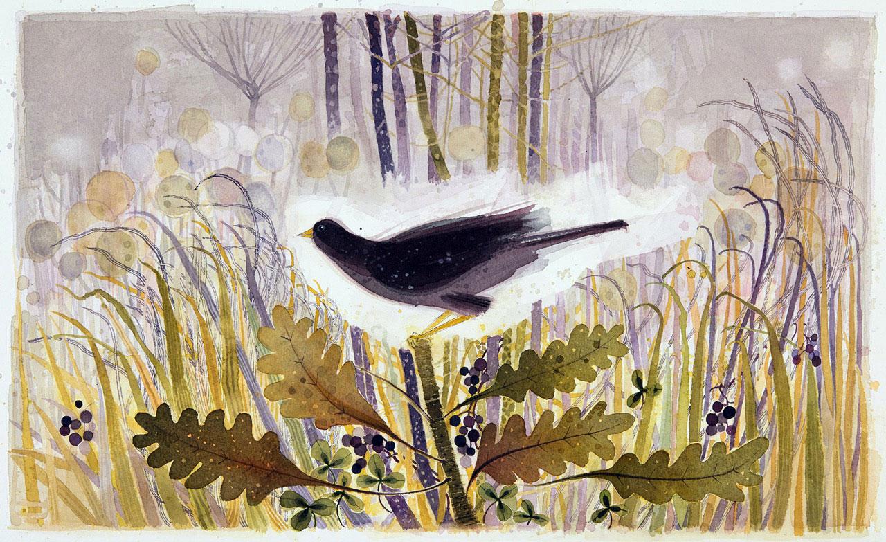 Ann Ross  November, grassland
