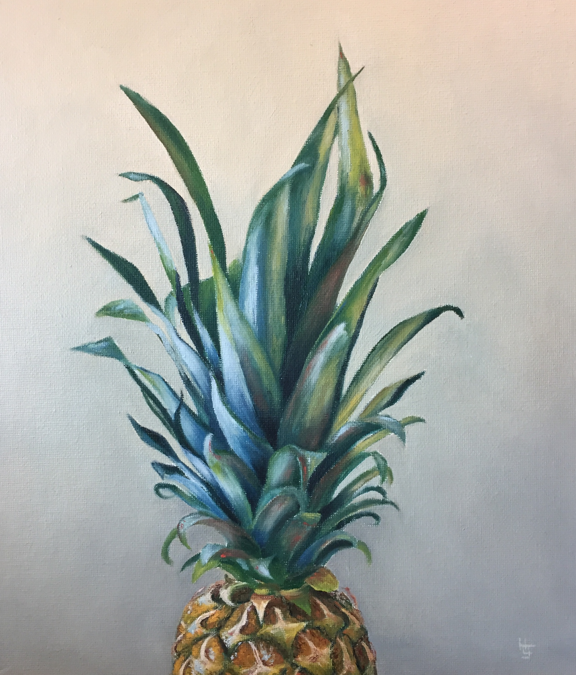 Henrietta Lawson Johnston Pineapple