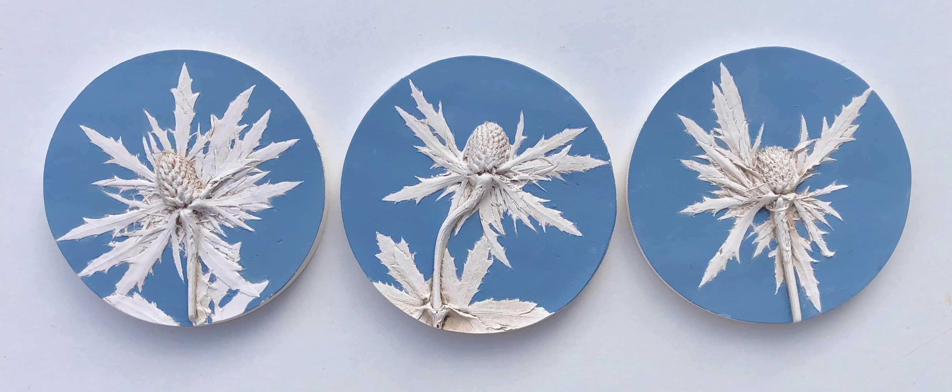 Katy Eccles Eryngium (Sea Holly) set of 3
