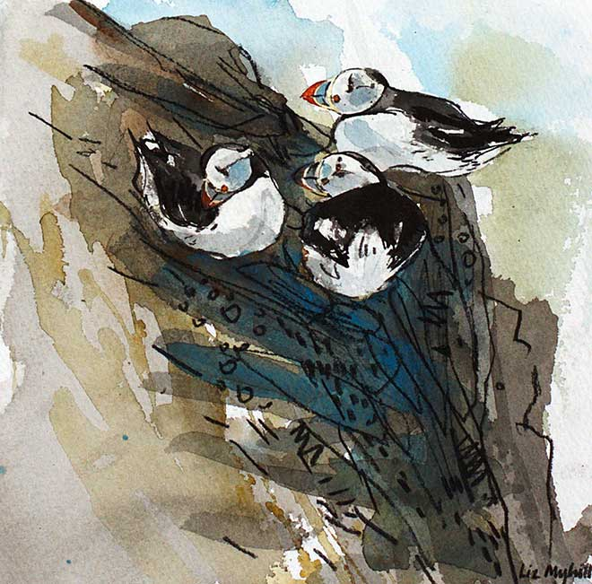 Liz Myhill Three Puffins