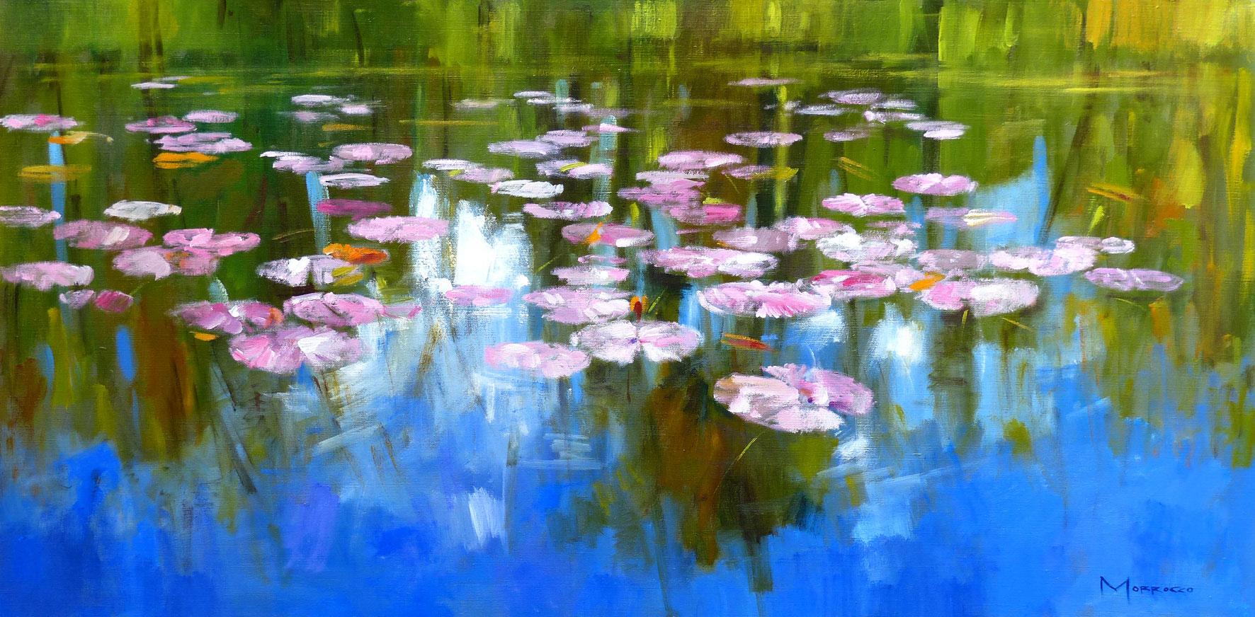 Jack  Morrocco Waterlilies, Still Pond