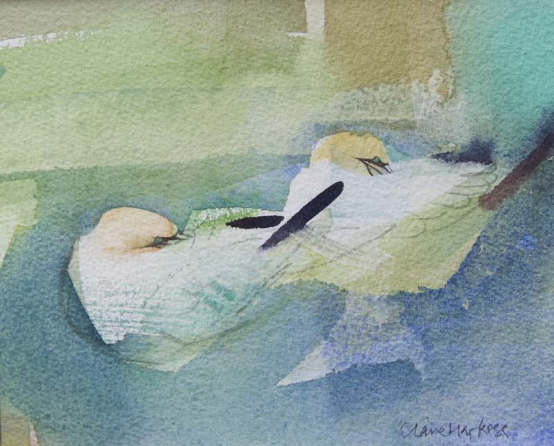Claire Harkess RSW Wee Gannets